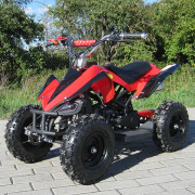 Miniquad_Racer_49_rot_total