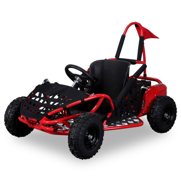 inder-Buggy-GoKart-1000-Watt_Rot_33353136303137_360-14_BGW_1620x1080